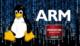 Kernel 3.7 será focado em melhora do suporte a processadores e placas AMD