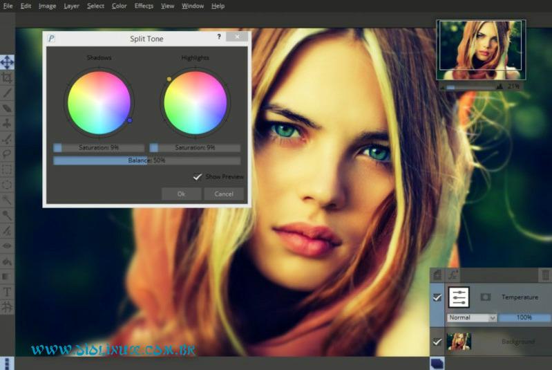 Editor de Imagens profissional Pixeluvo para Linux